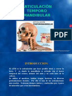 Art Icu Laci on Temporomandibular