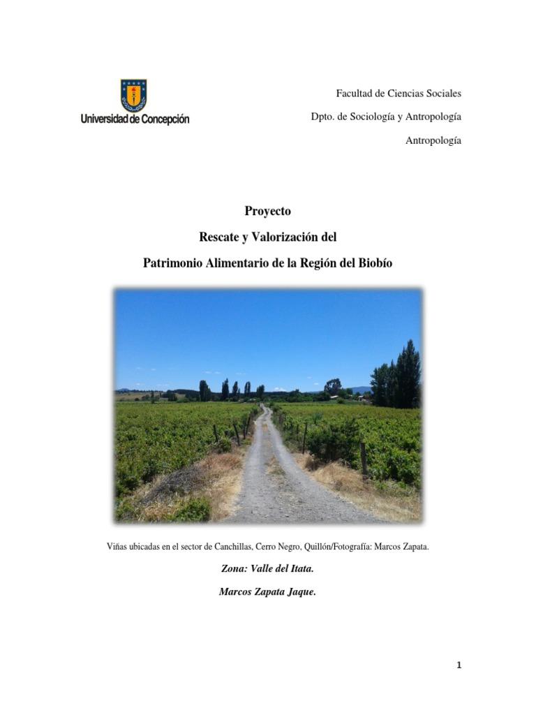 Informe Final Valle de Itata 7d9bed36d2e