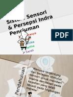 Sistem Sensori & Persepsi Indra Penciuman Edit