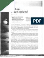 Capítulo 2 - Cultura Organizacional.pdf
