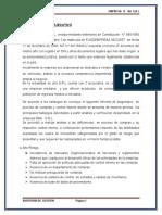 Proyecto Auditoria de Gestion Mauricio