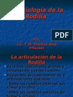 Kinesiología de La Rodilla