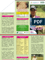 Brochure INTA FORTALEZA (1).pdf