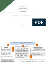 Mapas Penales Procedimientos Santiago