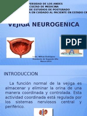 vejiga neurogenica diabetes pdf