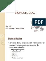 Macromoleculas (1).pdf