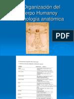 planos y cavidadesMC (1) (1).pdf