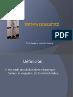 Sistema Esquelético para clase 240 (1).pdf
