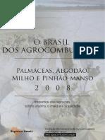 o Brasil Dos Agrocombustiveis v2