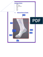 Ch 1 Diagram of General Parts of Socks and Description