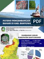 Potensi Pengembangan Wisata Bahari Kab. Banyuwangi- Jawa Timur