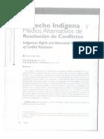 Derecho Indígena y Medios Alternativos de Resolucion de Conflictos_Cletus Gregor Barie