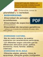 Referentes Conceptuales Para La Diversificación Curricular