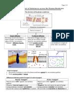 ChaptMovement of Substances Across the Plasma Membrane