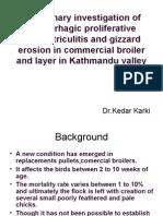 hemorrhagic proliferative Proventriculitis and gizzard erosion (HPPGE