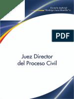 Juez Director Del Proceso Civil
