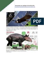 Especies Peruanas en Peligro de Extinción