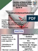 Expo Cervicovaginitis Equipo 10