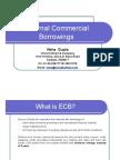 Presentation on External Commercial Borrowings