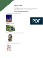 Apostila 9 Ano Química.pdf
