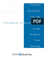 Clinical Guidelines for the Treatment of Depression in Primary Care
