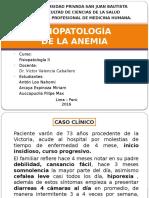 Fisiopatologia Anemia  Arzobispo LOAYZA