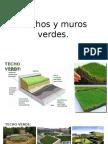 Techos y Muros Verdes