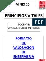 Dominio Principios Vitales Ufps.