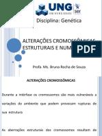 6) Alterações Cromossômicas Estruturais e Numéricas (II)
