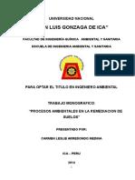 """""""PROCESOS AMBIENTALES EN LA REMEDIACION DE SUELOS"""".docx"""