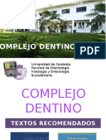 Anatomia Dental Pulpa