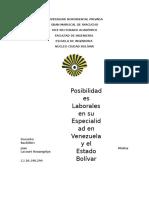 Posibilidades Laborales.docx