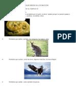Clasificación de Los Animales Según Su Locomoción