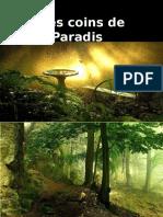 Ptit Paradis