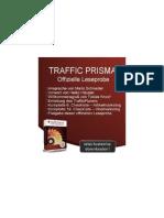 TrafficPrisma-Leseprobe