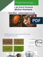 Capitulo 13 embriologia