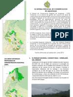 Sistema de Conservación Regional Amazonas.pdf