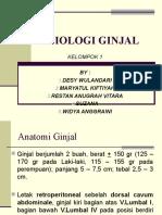 anatomi-ginjal