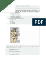DEMUESTRO LO APRENDIDO.docx