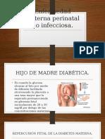 Enfermedad materna perinatal no infecciosa.pptx
