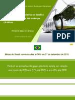 Matriz Energetic a Brasileira o Timo