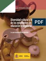 Diversidad Cultural Logros Mec 2010