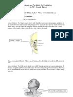 Silat Anatomy Course 09-module3