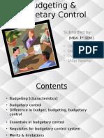 budgetingbudgetarycontrol-140910122354-phpapp02.pptx