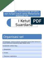 Mekanisme Adaptasi Sel.pptx
