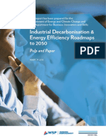 Industrial Decarbonisation & Energy Efficiency Roadmaps to 2050