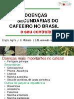 Doenças Secundárias Do Cafeeiro MATIELO