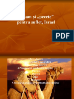 133557111-Israel (1) (1)
