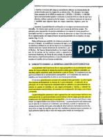 Salitchev. generalización.pdf