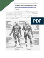 tema-fuerza.pdf